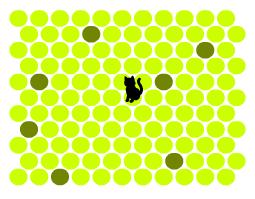 игра поймай кота